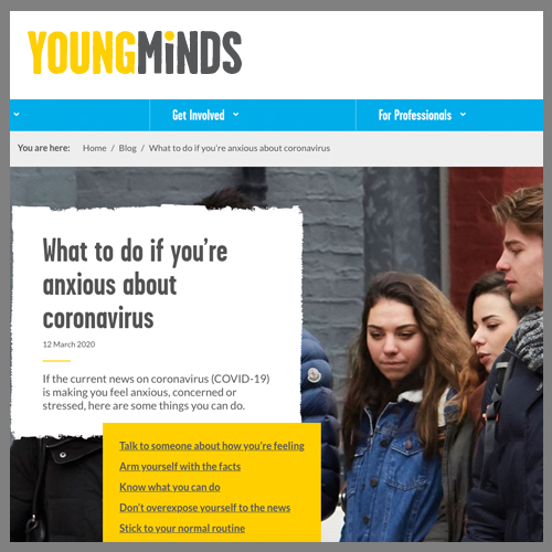 Young Minds web banner