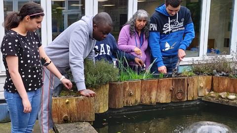 Students looking into a pond