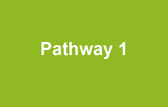 Green box with text Pathway 1