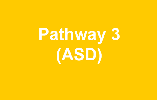 Yellow box with text pathway 3 ASD
