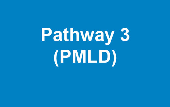 Blue box with text Pathway 3 PMLD