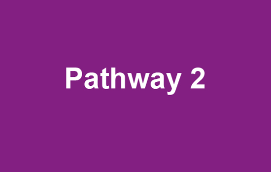 Pathway 2 text on purple background