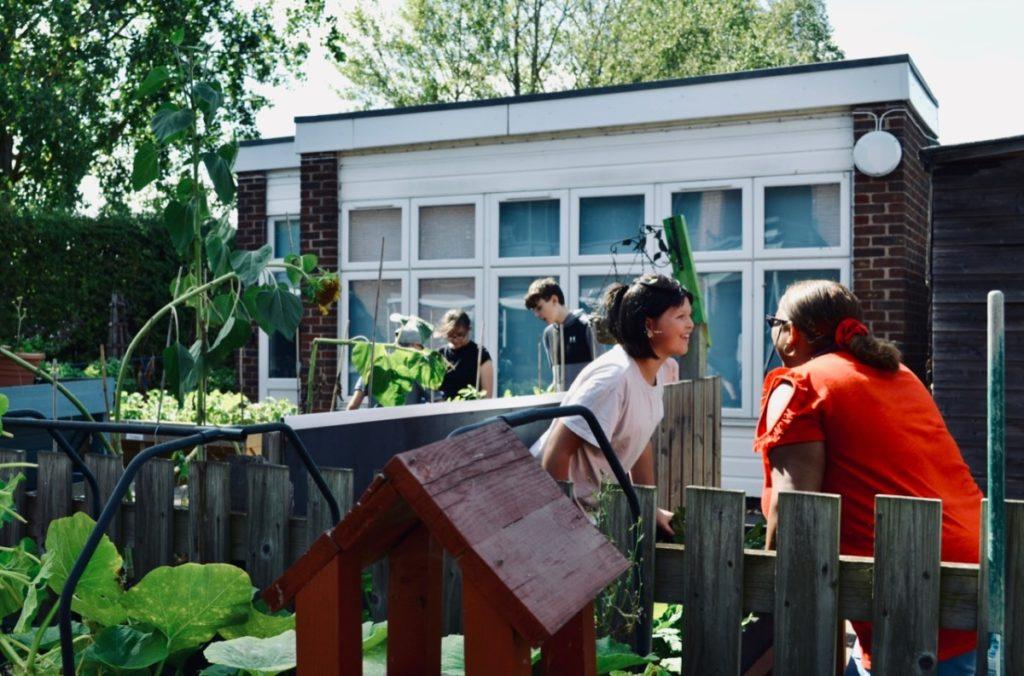 Students gardening in playground